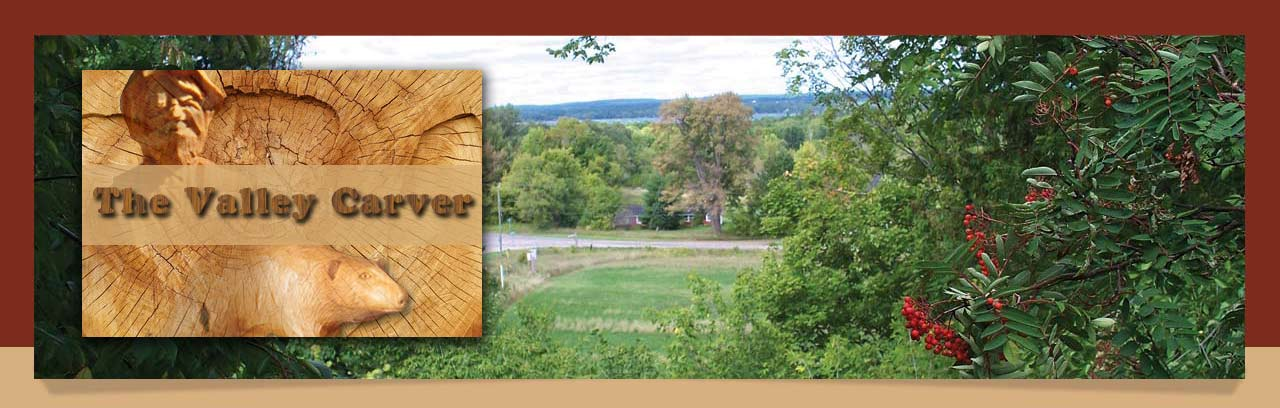 Image of the Ottawa Valley taken from the Valley Carver's Shop